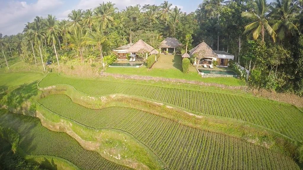 Jiwa, Villa's, Ubud, Bali