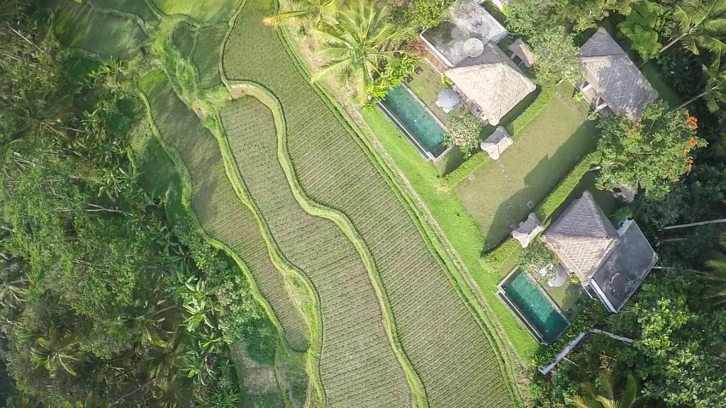 Jiwa 4 pax, Villa's, Ubud, Bali