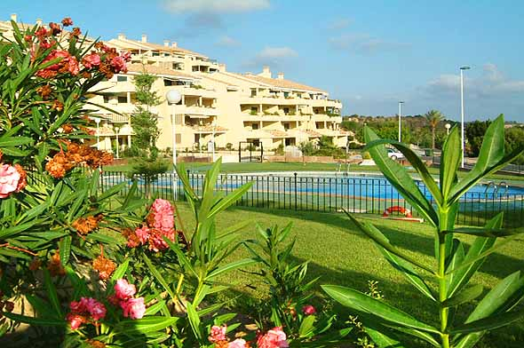 Albatros, Apartment in Campoamor, on the Costa Blanca, Spain  with communal pool for 4 persons...