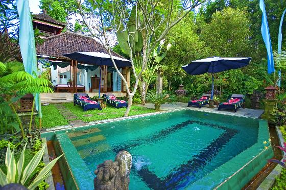 The Mahogany, Beautiful and nice villa in Ubud, Bali, Indonesia  with private pool for 4 persons...
